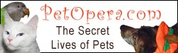 Ever wonder what secret lives your pets live? We did--and what we found makes most soap operas look tame! Explore the tabloid lives of our pets at PetOpera.com!
