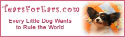 TearsForEars.com : Every Little Dog Wants to Rule the World